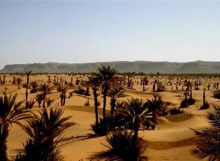 La vallée du Draa, oued mythique