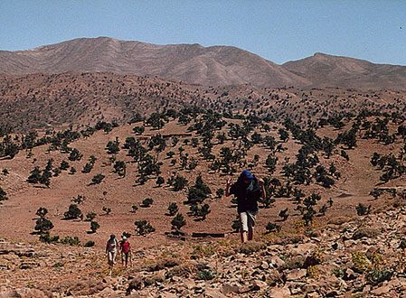 Sentiers nomades du Moyen Atlas