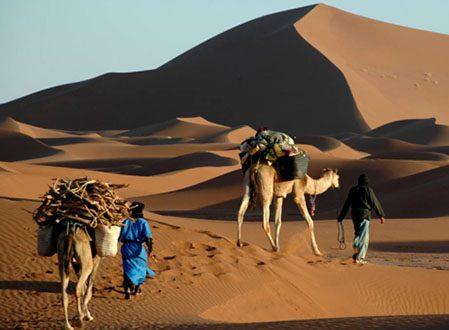Désert Maroc …Sur la trace des caravanes d'autrefois!