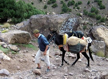 Villages berbères du mont Toubkal et hautes vallées