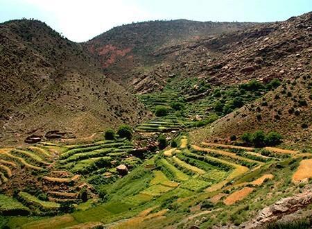 Plateau du yagour & Haut Atlas nomade