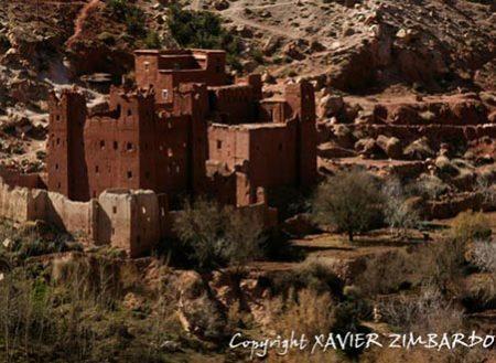 Atelier peinture au Maroc sur les pas de Majorelle