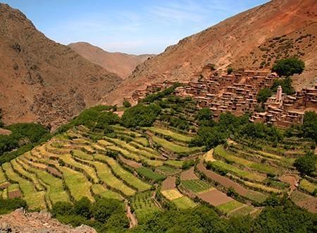Voyage au maroc entre jardins de l 39 atlas et oasis du sud for Oasis jardin de cocagne