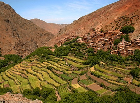Maroc entre jardins et oasis