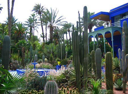 Week-end Saveurs et senteurs à Marrakech