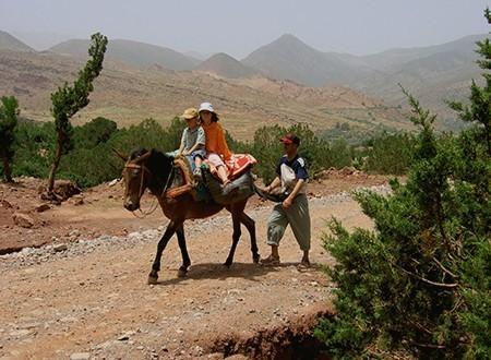 Sentiers berbères du Haut Atlas