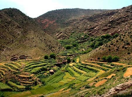 Excursion vallée de l'Ourika