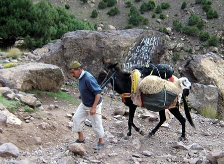 haut-atlas-sentiers-berberes
