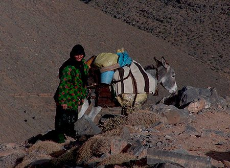 Transhumance avec les nomades du Maroc