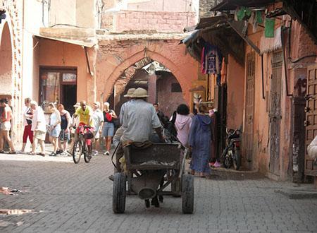 De Marrakech aux kasbahs de l'Atlas