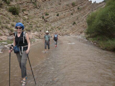 Trekking Mgoun