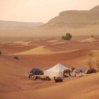 Treks désert